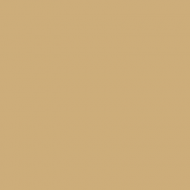 ColorSealant CS4206 beuken